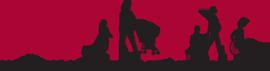 AMCHP-logo