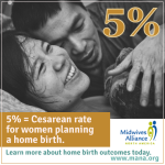 link to Home Birth Safety Outcomes study